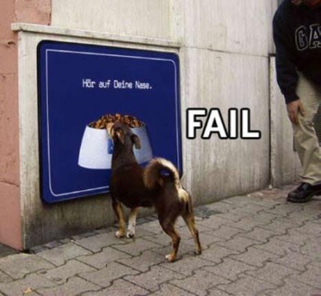 Cachorro faminto com ração na placa